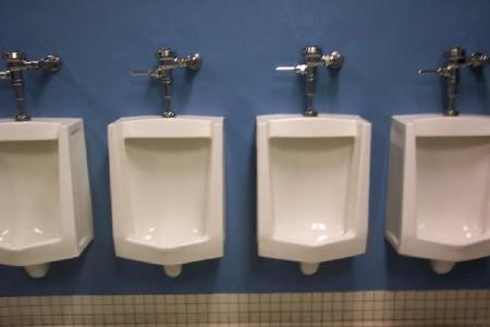 unbridled hatred urinals, Home design